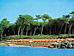 Appartamento vacanza Marina di Cecina