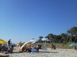 spiaggia libera di vada